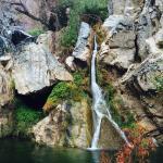 Foto de Darwin Falls