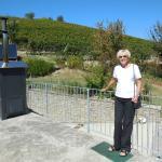 Verandah overlooking vineyards