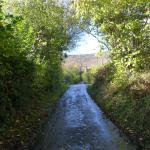 Roadway up to the bottom of The Cats Back ( Black Hill)