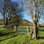 Just one of our many views of The Black Mountains
