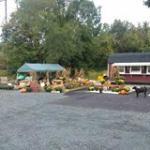 Jem's Gardens