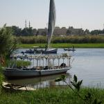 Blick aus dem Garten auf den Nil