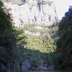 In the Shennv Stream