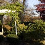 Joseph ambler grounds