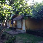 Bungalow lato giardino