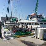 Kathleen D Sailing Catamaran Day Sails