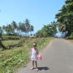 road to majorda beach