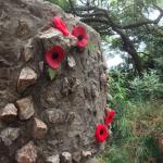 Poppies on WW2 Walk