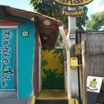 Photo of Bananas Hostel