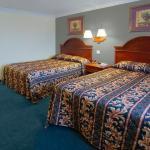 Standard Queen Beds
