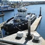 マリーナ桟橋係留のボート