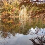 Lake on a beautiful autumn afternoon
