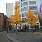 The location in Autumn 2014