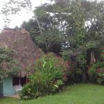 Tiki Hut Lodging