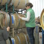 Barrel tasting - got to taste a cabernet sauvignon that had been aging for just 9 months.