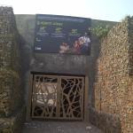 Aravalli Biodiversity Park