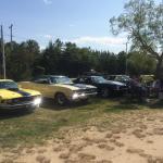 Vintage car show......