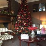 Beautiful Xmas tree in 'Gillian's lounge'