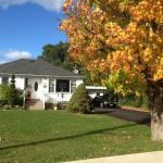 breathtaking fall colours