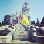 The New Swan Castle of Germäny ♥♡