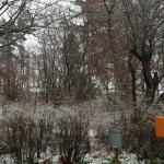 Park in Krems