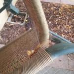 cobwebs on outdoor furniture (Rm 133) November 21, 2014
