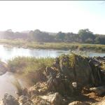 See the Olifants River on 3 hour Safari