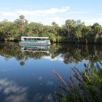 Myakka River tour boat.