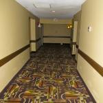 BEST WESTERN Maple Ridge Hotel Foto