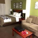 Spacious and tastefully decorated King suite
