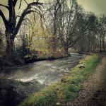 A short walk from The Tea Junction and you are walking alongside The River Manifold