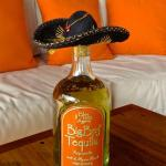 Tequila sold at hotel