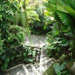 Tranquility in Ubud - Sama's Cottages