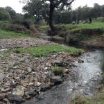 Río Odiel, muy cerca del hotel