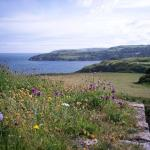 The Wildlife & Forts of Berry Head Trail