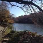Kichijoji park