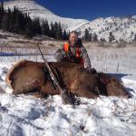 Elk hunt -2014