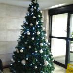 Já decorado para o natal