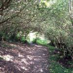 South West Coast Path - Lamorna Cove to Mousehole & Kemyel