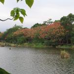 Yilan Luodong Forestry Culture Park