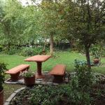 The garden from the veranda of the chalet