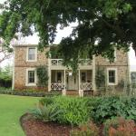 Front of house with hugh oak tree
