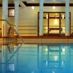 Pool Studio Premium Suite