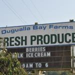 Dugualla Bay Farms