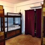 bunk beds in 6-bed mixed dorm room