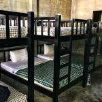 bunk beds in 6-bed mixed dorm room
