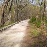 trail heading East