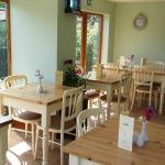 Tracey's Little Cake Company Tearoom