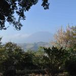 colline intorno a Camerino