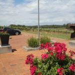 Bimbadgen Winery, Hunter Valley